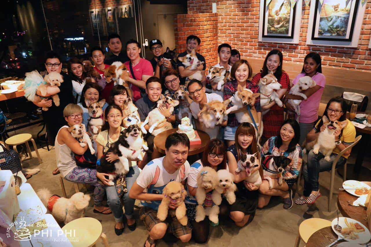 Pet-Friendly Cafes in Klang Valley 5 - Bow Wow Cafe